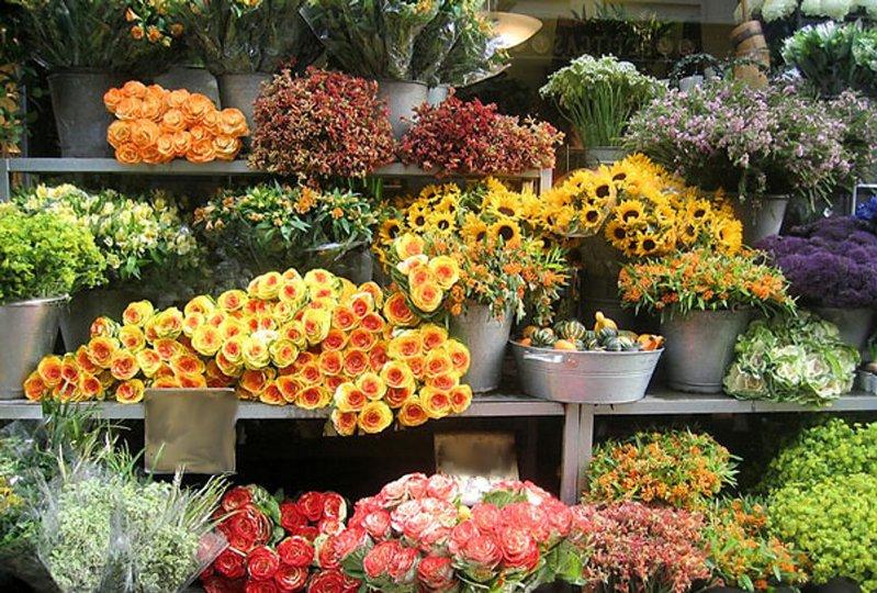 Выгодно открыть цветочный магазин