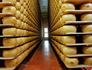 Производство сыра сложный бизнес